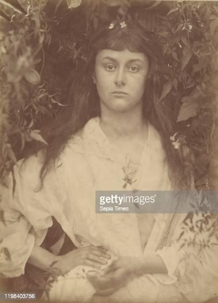 Pomona Albumen silver print from glass negative Image 364 x 263 cm Photographs Julia Margaret Cameron British Calcutta 18151879 Kalutara Ceylon Alice...