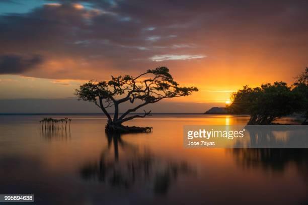 ponce,puerto rico - paisajes de puerto rico fotografías e imágenes de stock