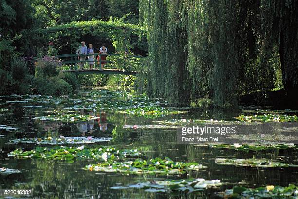 Pond at Monet's Garden