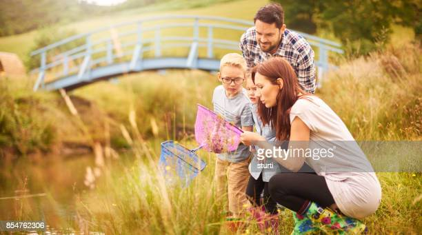 pond dipping family - pond stock pictures, royalty-free photos & images