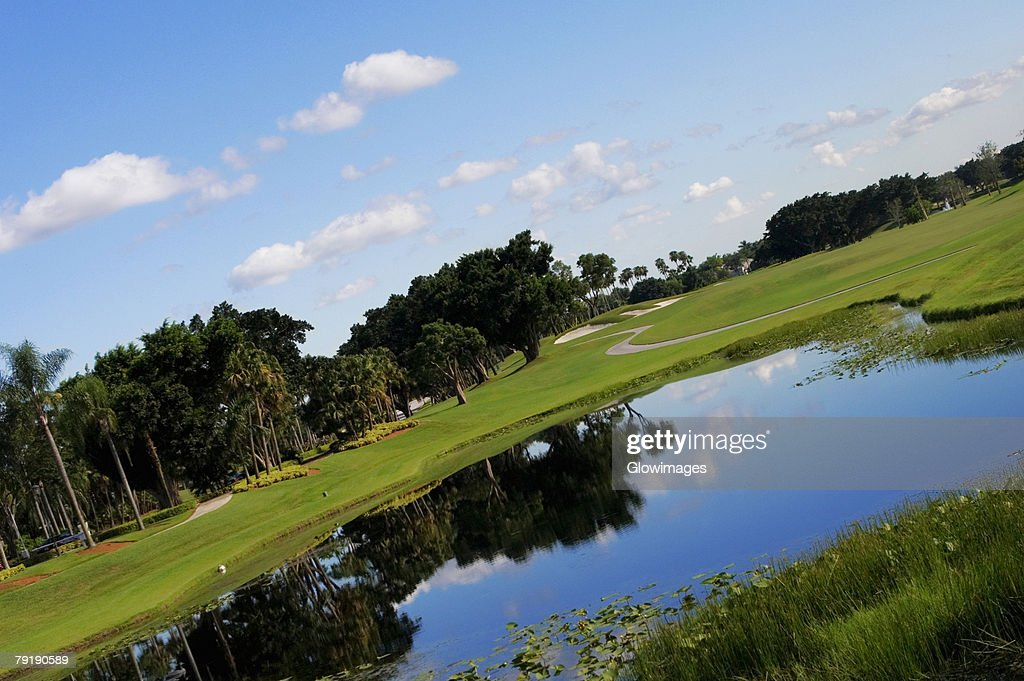 Pond in a golf course : Foto de stock