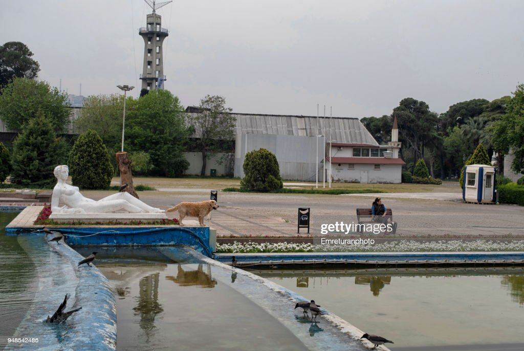 Pond in a public park with a statue,birds,dog and the owner. : Stock Photo