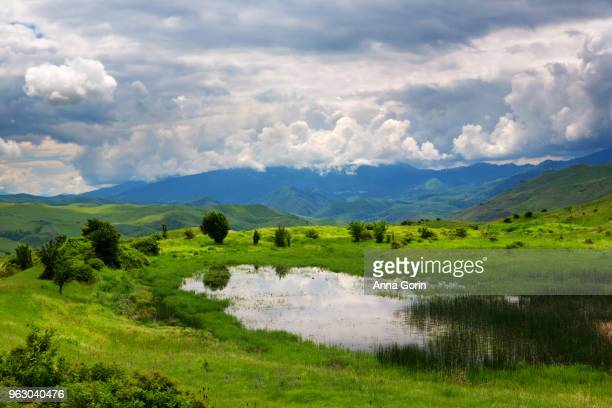 Pond in middle of lush meadow reflecting dramatic clouds, White Bird, Idaho, spring afternoon