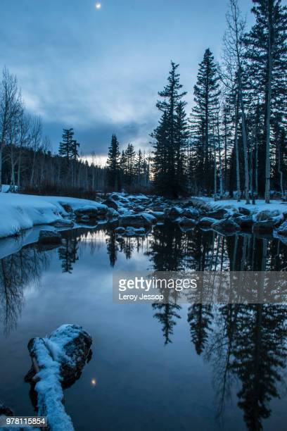 pond in winter forest - snow moon stock pictures, royalty-free photos & images