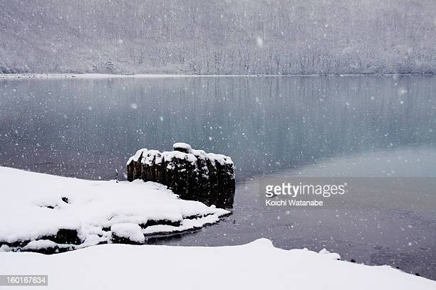 a pond in winter - miyagi prefecture stock pictures, royalty-free photos & images