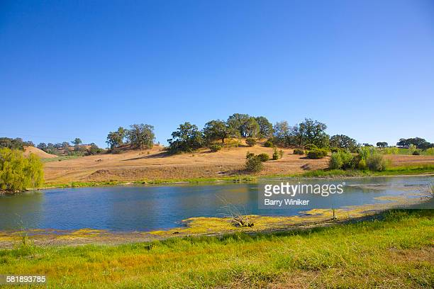 pond, jordan winery, sonoma co., california - healdsburg stock pictures, royalty-free photos & images