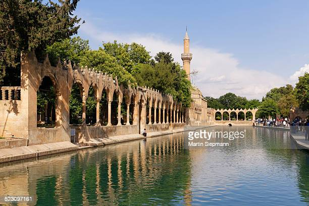 pond of abraham with rizvaniye mosque, balikligol pond and rizvaniye camii, sanliurfa, urfa, sanliurfa, southeastern anatolia region, anatolia, turkey - şanlıurfa stock pictures, royalty-free photos & images