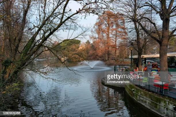 pond with fountain at margherita garden in winter,bologna. - emreturanphoto stock pictures, royalty-free photos & images