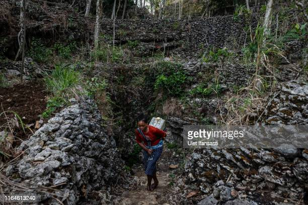 Poniyem carries a jerrycan full of water from a cave at Klepu village Sawahan Kulon on August 28 2019 in Pacitan East Java province Indonesia During...