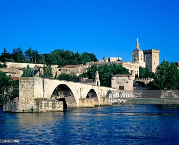 pont d'avignon bridge and popes palace - ローヌ県 ストックフォトと画像
