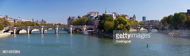 pont neuf and the île de la cité in paris - gwengoat foto e immagini stock