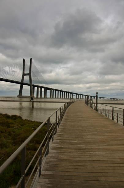 Ponte Vaco da Gama