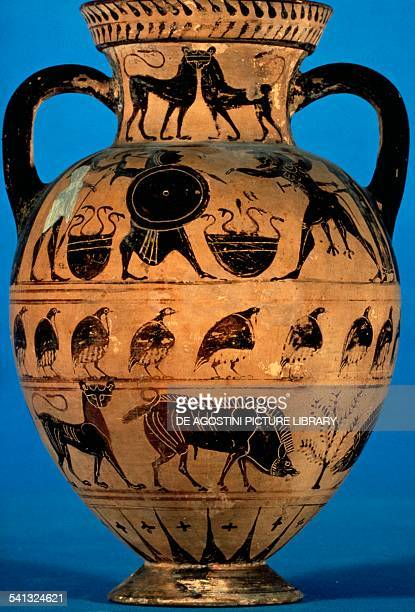 Pontic amphora 530520 BC by the painter of Paris Greek civilisation 6th century London British Museum