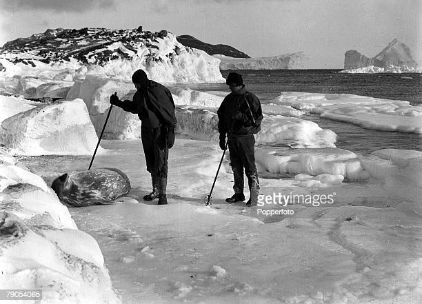 HG Ponting Captain Scotts Antarctic Expedition 1910 1912 Dimitri Geroff and Hooper looking at a Weddell seal in the ice off Cape Evans