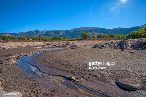 ponton reservoir - sequía fotografías e imágenes de stock