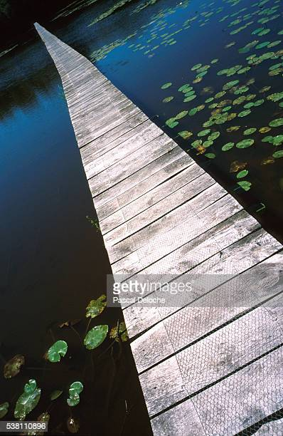 pontoon bridge - pontoon bridge stock pictures, royalty-free photos & images