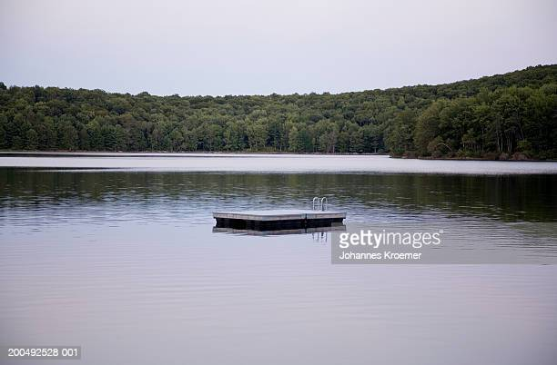 Pontoon in lake