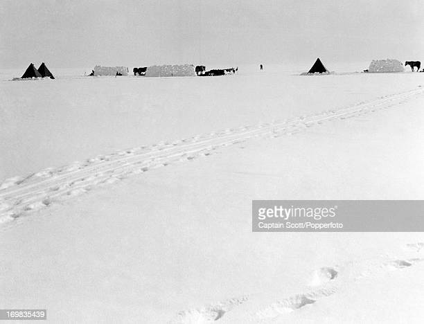 A pony camp on the Great Ice Barrier photographed during the last tragic voyage to Antarctica by Captain Robert Falcon Scott circa November 1911...