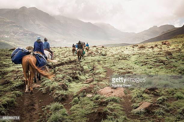 pony trekking in lesotho - lesoto fotografías e imágenes de stock