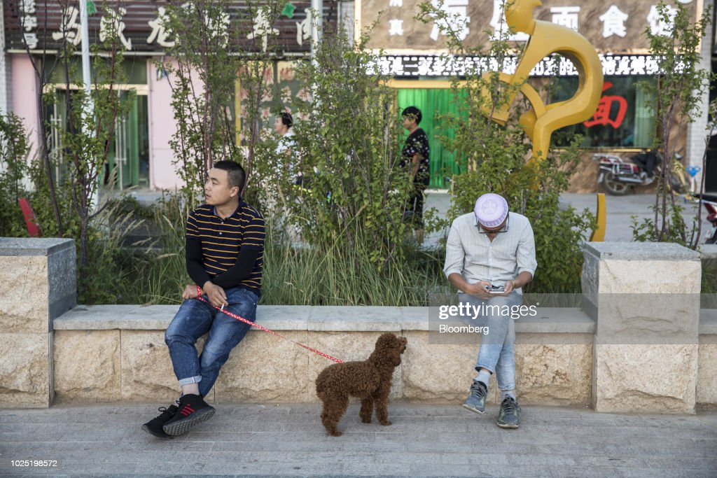 A poodle looks at a man using a smartphone as its handler smokes a cigarette in Golmud, Qinghai province, China, on Sunday, July 22, 2018. Amid rising fears about a trade war, China's policy makers have unveiled measures to boost infrastructure construction and credit to smaller firms, as well as tax cuts. Photographer: Qilai Shen/Bloomberg via Getty Images