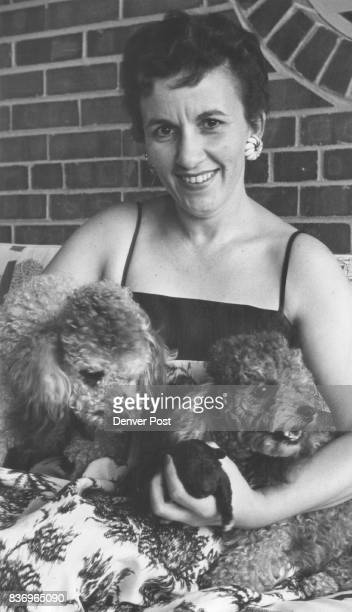 Poodle Puppy At right Mrs Bradley fondles the weekold poodle 'Tout de Suite' and her proud parents 'Pourquoi' and 'Pourcause' Though born black puppy...