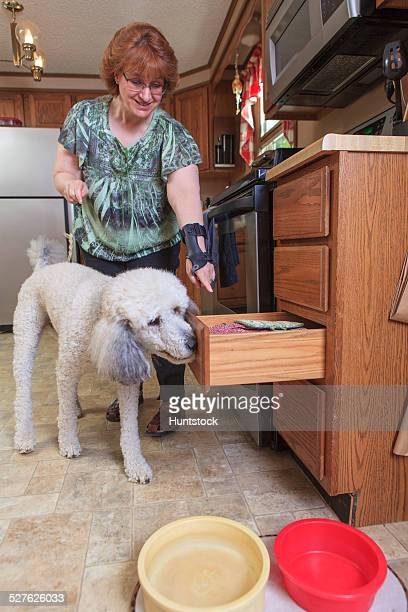 Poodle service dog closing a kitchen drawer