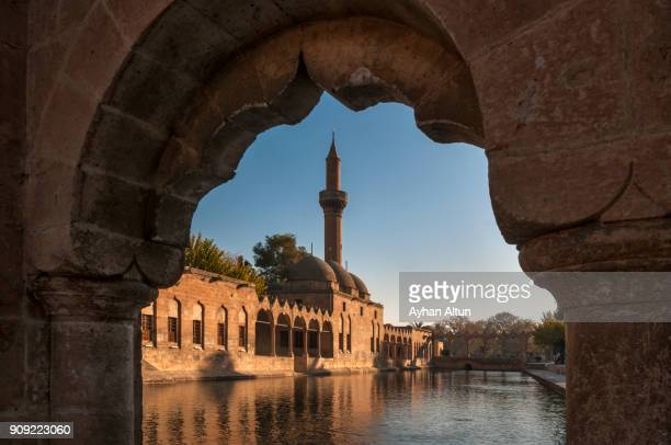 pool of abraham with rizvaniye mosque,sanliurfa,south east anatolia of turkey - şanlıurfa stock pictures, royalty-free photos & images