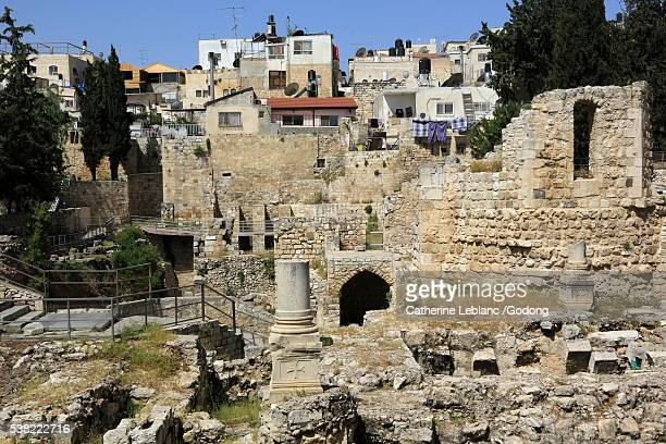 30 Top Pool Of Bethesda Pictures, Photos and Images - Getty