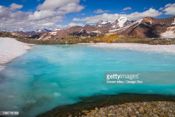 a pool of water lies on a snow patch high on a ridge in the alaska range in the summer.  the mountain in the background is white princess - miley fotografías e imágenes de stock