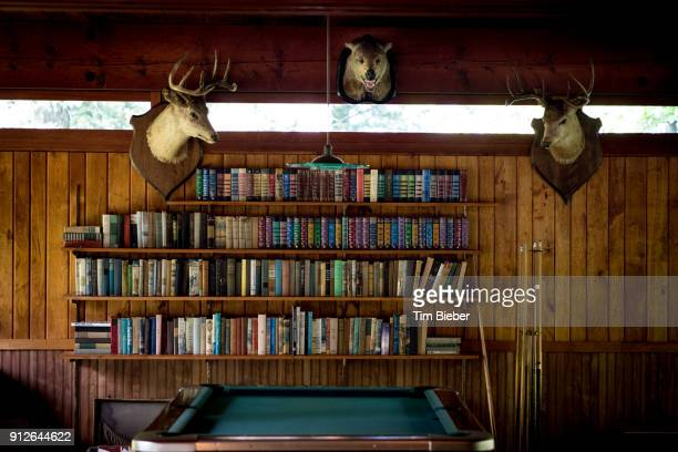 pool room at lake resort - man cave stock pictures, royalty-free photos & images