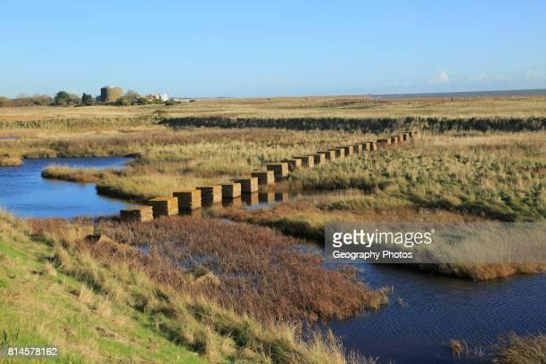 Pools of water between shingle beach and flood defense wall Shingle Street Suffolk England UK second world war antitank defenses