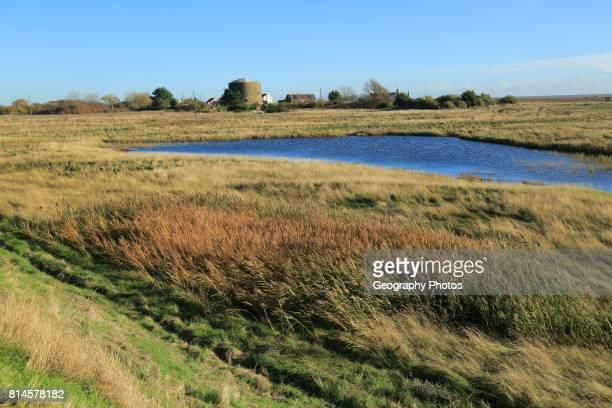 Pools of water between shingle beach and flood defense wall Shingle Street Suffolk England UK