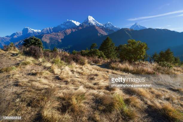 Poon hill with morning light, Nepal.
