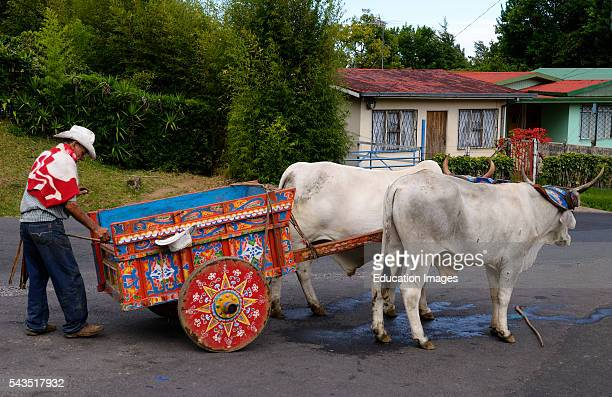 Poor farmer with painted oxcart and oxen on road in Costa Rica