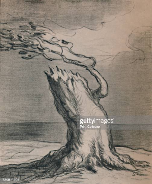 Poor France The Trunk Is Blasted' Full title 'Poor France The trunk is blasted but the roots hold' allegory on the political situation in France From...