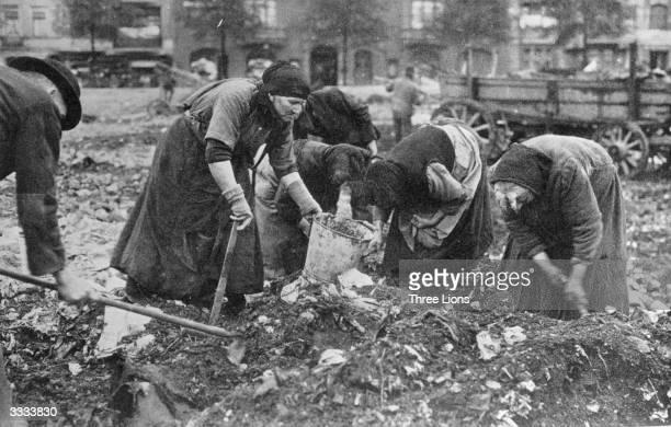 Poor German women sift through garbage looking for food in post war Germany