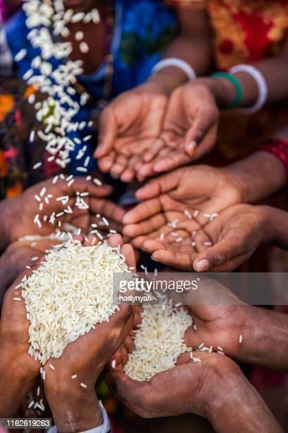 pauvres enfants indiens demandant de la nourriture, inde - famine photos et images de collection