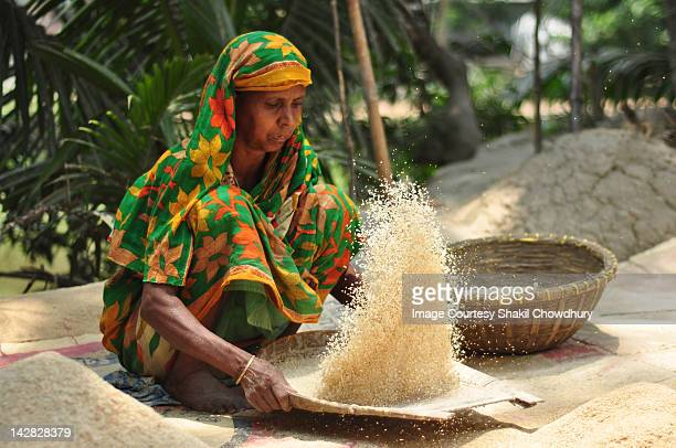 poor lady processing rice - bangladesh village stock photos and pictures