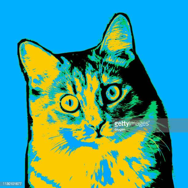 pop art multicolored cat portrait - gift icon stock photos and pictures