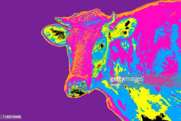 Pop art multicolored cow portrait