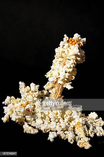 Popcorn Isolated on Black