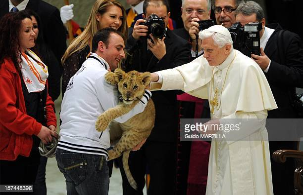 Pope Benedict XVI attends a special audience for circus artists at the Paul VI Hall on December 1 2012 in the Vatican City Vatican Thousands of...