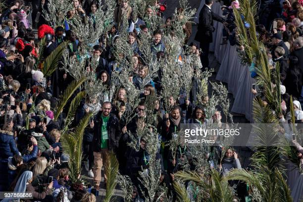 S SQUARE VATICAN CITY VATICAN Pope Francis leads the Palm Sunday Celebrations in St Peter's Square in Vatican City The celebration begins with a...