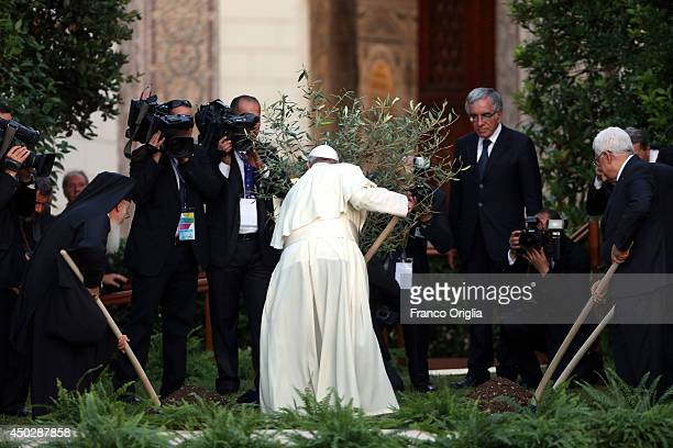 Pope Francis Palestinian President Mahmoud Abbas and Patriarch Bartholomaios I plant an olive tree during a peace invocation prayer at the Vatican...