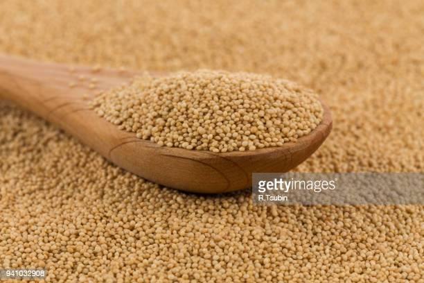 popped amaranth grain