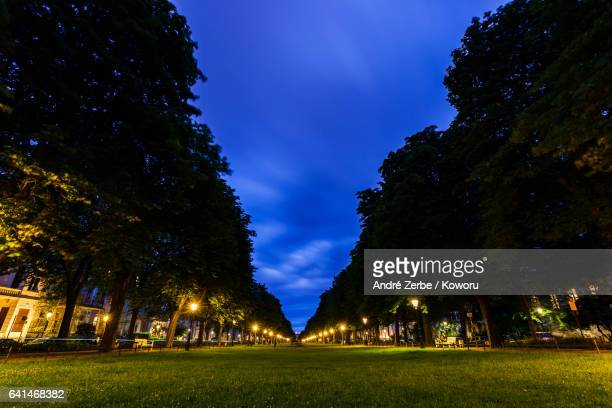 poppelsdorfer allee (alley / allée) in bonn, germany at night-time - boulevard stock pictures, royalty-free photos & images