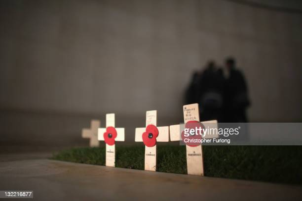 Poppies and crosses are placed in the ground as people pay their respects at the National Memorial Arboretum on Armstice day on November 11, 2011 in...