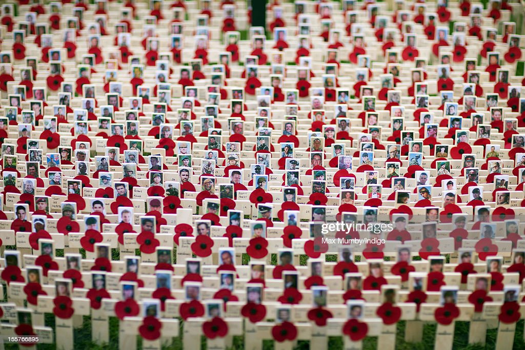 Poppies and crosses in memory of British Military personnel killed in the combat in Afghanistan placed in The Field of Remembrance at Westminster Abbey on November 08, 2012 in London, England.