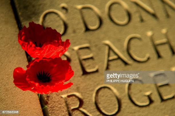 Poppies are pegged on the wall bearing the WWI dead soldiers' names at the military cemetery of the Australian National Memorial in...