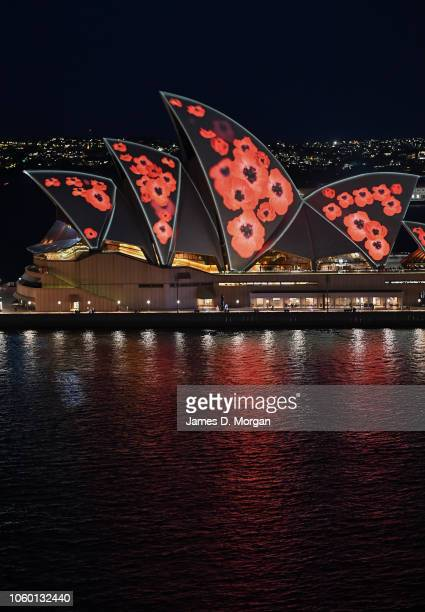 Poppies are projected onto the sails of the Opera House on November 11 2018 in Sydney Australia Remembrance Day 2018 marks the centenary anniversary...